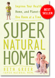 Book Cover for Super Natural Home by Beth Greer